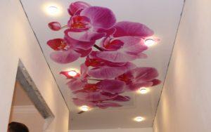 Натяжной потолок глянцевый с фотопечатью в прихожей 6,95 м2