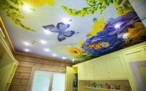 Натяжные потолки фотопечать бабочка на лугу