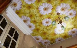 Натяжные потолки фотопечать ромашки