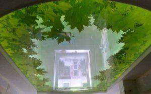 Натяжные потолки глянцевые фотопечать зеленые листья