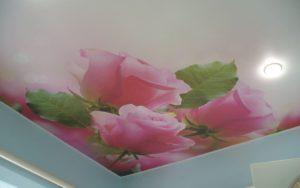 Матовый натяжной потолок в спальне 14,5 кв.м. с фотопечатью