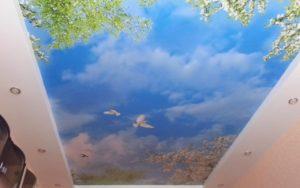 Натяжные потолки фотопечать небо с птицами