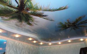 Натяжной потолок фотопечать пальмы